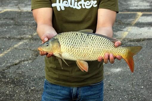 guy holding a catch